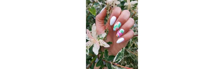 Beauté des mains